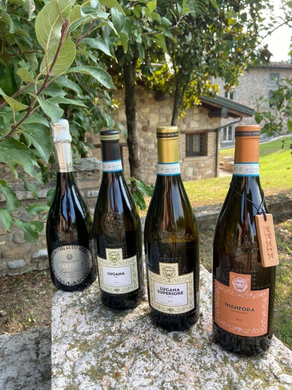 Borgo la Caccia, l'oasi del Lugana e del Carmenoire di Pozzolengo